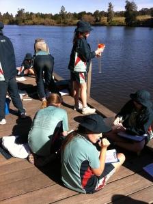 Cattai wharf water quality testing