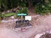 Suitcase garden