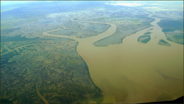 The swollen Fitzroy River in Queensland, Australia, where heavy rains in early 2011 led to extraordinary regrowth with a global impact. Capt. W. M. & Tatters/Flickr, CC BY-NC